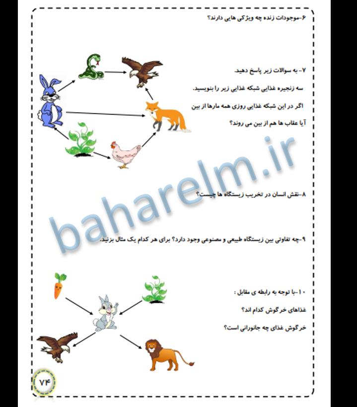 نمونه صفحات جزوه علوم چهارم ابتدایی