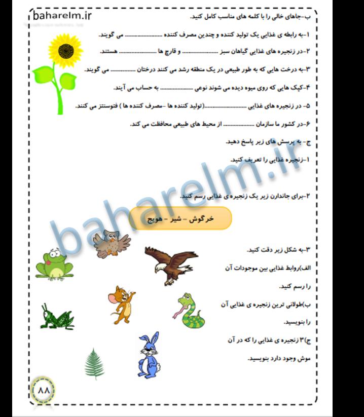نمونه صفحات جزوه علوم ششم ابتدایی